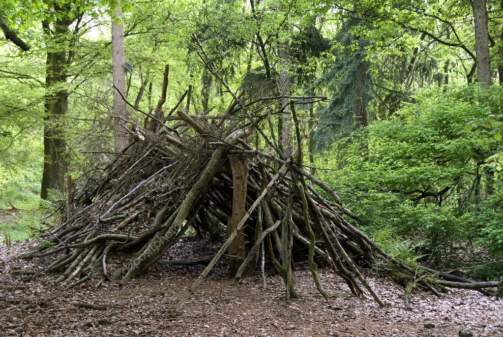 Bear Grills Building A Shelter
