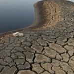 Мертвое озеро — Стоковое фото