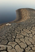 Dead Lake — Stock Photo