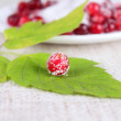 Royalty-Free Stock Photo: Cowberry sprinkled with sugar on green s