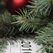 Calendar for 2010 covered with fur-tree — Stock Photo #1051356