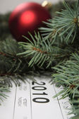 Calendar for 2010 covered with fur-tree — Stock Photo