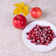 The frozen cowberry against red apples — Stock Photo