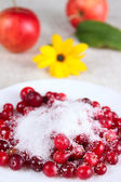 Cowberry in sugar on white dish against — Stock Photo
