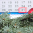 branches de sapin contre un calendrier — Photo