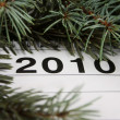 Calendar of 2010 — Stock Photo