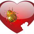 Colorado bug on glass red heart — Stock Photo #1525263