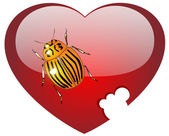 Colorado a bug on glass red heart — Stock Photo