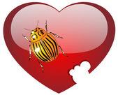 Colorado um bug no coração de vidro vermelho — Fotografia Stock