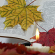 The book in autumn leaves with a candle - Stock Photo
