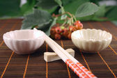 Chopsticks with two drinking bowl — Stock Photo
