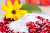Cowberry in sugar — Stock Photo