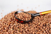 Russian wooden spoon buckwheat groats — Stock Photo