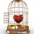 Red heart in cage — Stock Photo