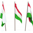 Flag of Tajikistan — Stock Photo #1934924