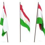 Flag of Tajikistan — Stock Photo #1934924