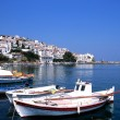 Stock Photo: Port of Skopelos