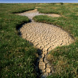 Drought hits - Stock Photo