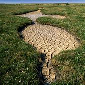 La sécheresse hits — Photo