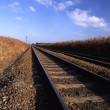 Royalty-Free Stock Photo: Rail track