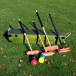 Stock Photo: Garden Croquet