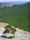 Mountain array — Stock Photo