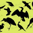 Royalty-Free Stock Obraz wektorowy: Silhouettes of the birds