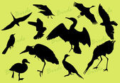 Silhouettes of the birds — Stock Vector