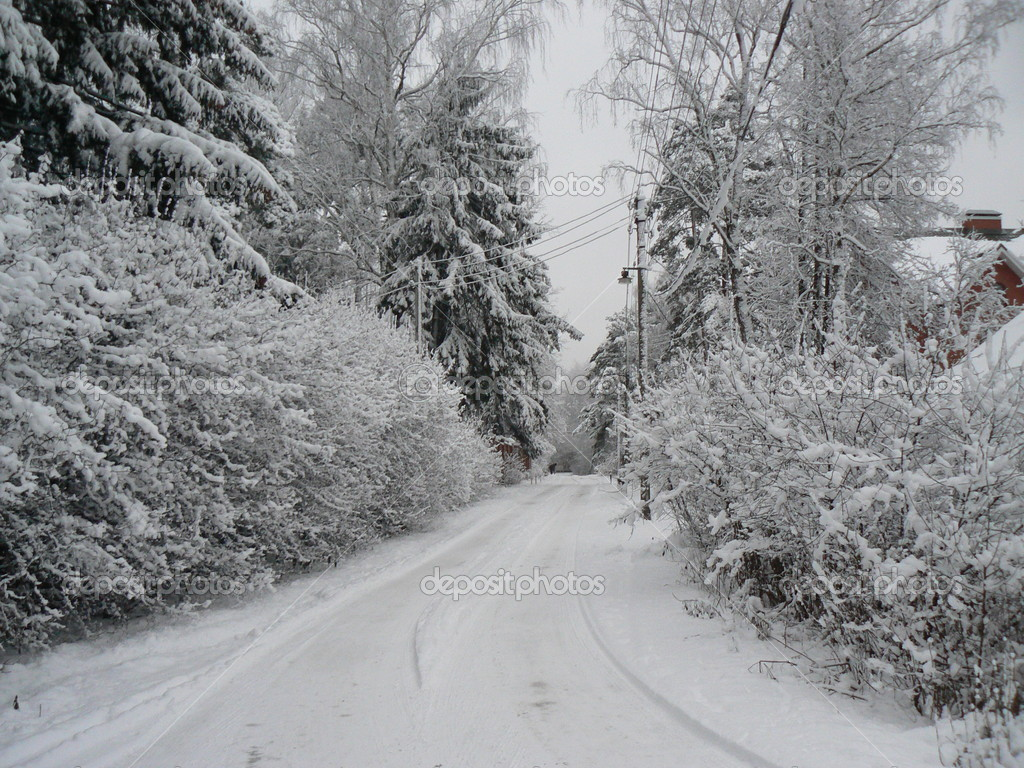 Winter landscape  — Stock Photo #1038156