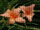 Flowers on weaved background — Stock Photo