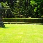 Garden — Stock Photo #1034899