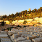 Jewish Cemetery — Stock Photo #1037220