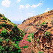 Golan Height — Stock Photo