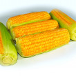 Royalty-Free Stock Photo: Corn