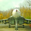 The MIG29 Operational Multipurpose Fight — Stock Photo