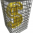 Gold dollar in a steel cage. — Stock Photo #1068771
