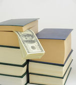 Money in Book. — Stock Photo