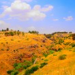 Golan Height — Foto Stock