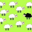 Black sheep — Stock Vector