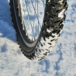Royalty-Free Stock Photo: Bicycle wheel on a snow