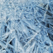 Royalty-Free Stock Photo: Backgrounds of the first thin ice.