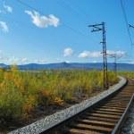 Turn of the railway — Stock Photo #1058688