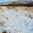 Snow on a rural Road — Stock Photo #1059991