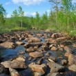 Creek current amongst stones — Stock Photo #1078714