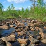Creek current amongst stones — Stock Photo