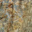 Texture of stone - 