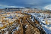 Road on the first snow — Stock Photo