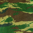 Royalty-Free Stock Photo: Camouflage texture