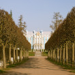 Постер, плакат: View of park in Pushkin