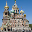 Church of the Savior on Spilled Blood — Stock Photo #1038737